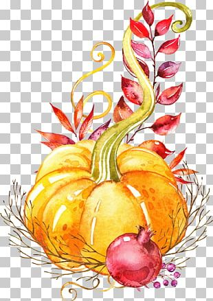 Pumpkin Autumn Vegetable Watercolor Painting Platter PNG