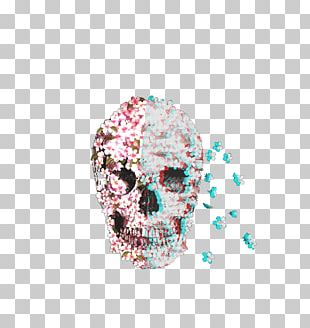 Calavera Skull Flower Drawing Bone PNG