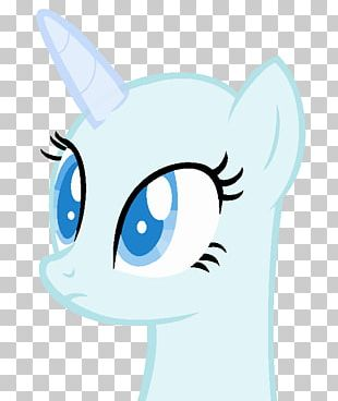 Whiskers Cat Horse Snout Mammal PNG