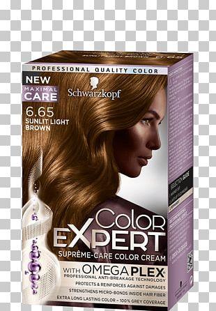Hair Coloring Human Hair Color Brown Hair PNG