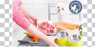 Dog Food Raw Foodism Cupcake Diet Food PNG