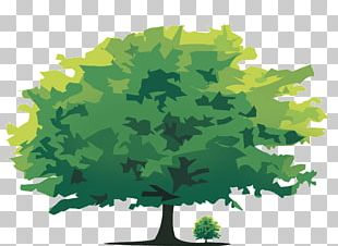 Tree Computer Icons PNG