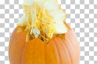 Pumpkin Pie Vegetable Zucchini Pumpkin Seed PNG