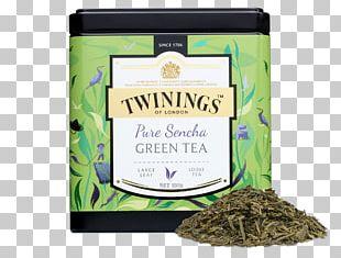 Earl Grey Tea Lady Grey Tea Leaf Grading Green Tea PNG