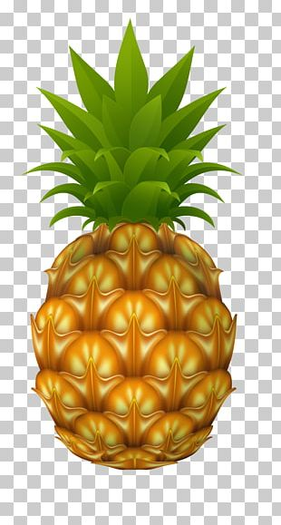 Pineapple Stock Photography Drawing PNG