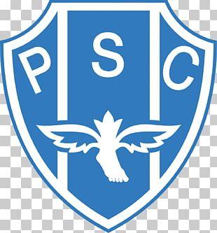 Club América Dream League Soccer Liga MX Tigres UANL C F  Pachuca
