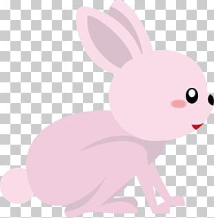 Domestic Rabbit Hare Easter Bunny PNG