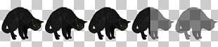 Black Cat Black Cat Black Hair Savannah College Of Art And Design PNG