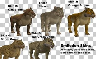 Lion Big Cat Terrestrial Animal Wildlife PNG