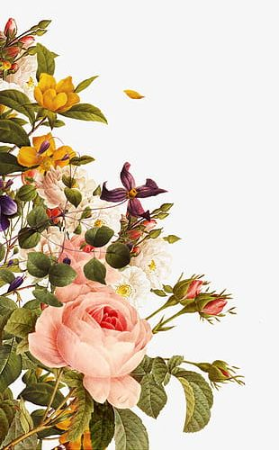 Creative Floral Border PNG