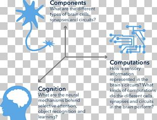 Allen Institute For Brain Science Technology Research Cognitive Science PNG