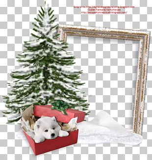 Christmas Ornament Santa Claus Frames Christmas Tree PNG