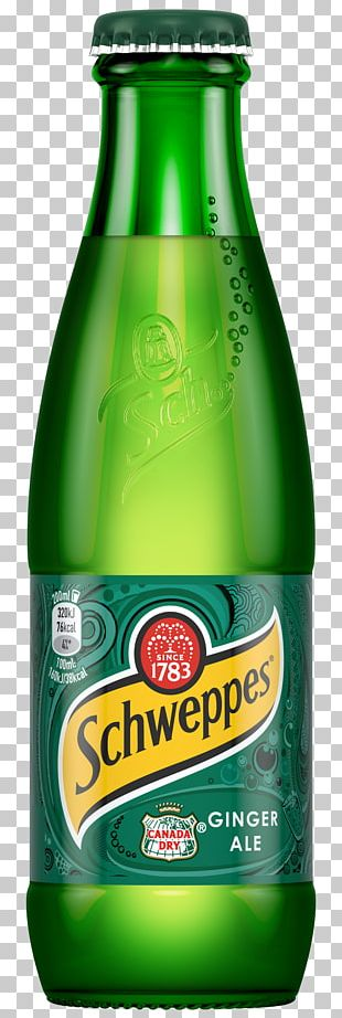 Ginger Ale Ginger Beer Drink Mixer Tonic Water Fizzy Drinks PNG