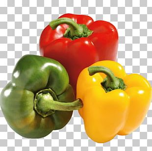Bell Pepper Mexican Cuisine Serrano Pepper Food Chili Pepper PNG