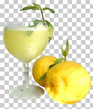 Orange Juice Cocktail Smoothie Drink PNG