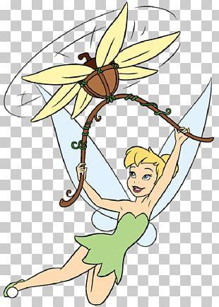 Tinker Bell Fairy Disney Fairies The Walt Disney Company Disney Princess PNG