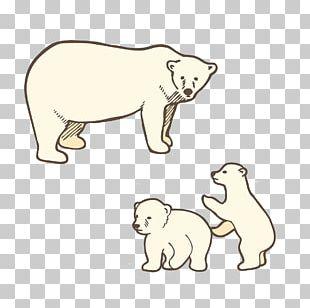 Baby Polar Bear Dog Brown Bear PNG