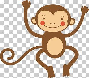 Cartoon Monkey Infant Illustration PNG