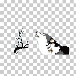 Arctic Wolf Illustration PNG