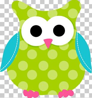 Saint Patrick's Day Shamrock Owl PNG