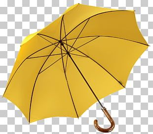 Umbrella Auringonvarjo Walking Stick PNG