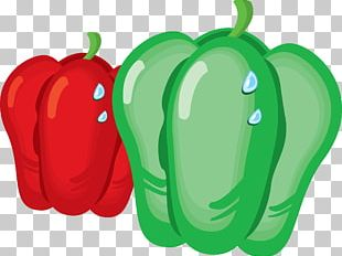 Bell Pepper Vegetable Chili Pepper Paprika PNG