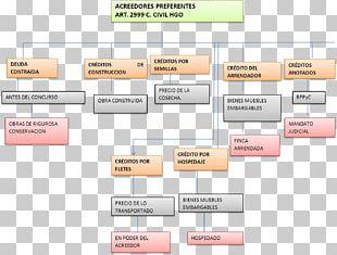 Derecho Concursal Procedimiento Concursal Law Concursado Debtor PNG
