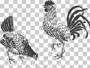 Chicken Rooster Stencil Art PNG