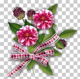 Flower Floral Scent PNG