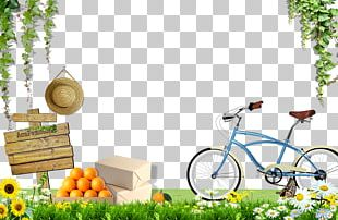 Bike On The Grass PNG