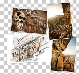 Collage Photomontage Stock Photography Frames PNG