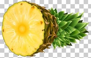 Pineapple Coconut Tropical Fruit PNG