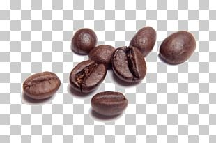 Chocolate-covered Coffee Bean PNG