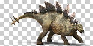 Stegosaurus Tyrannosaurus Jurassic Park Ankylosaurus Dinosaur PNG