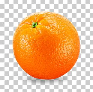 Orange Juice Valencia Orange Fruit Citrus × Sinensis PNG