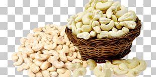 Cashew Goan Cuisine Raw Foodism Dried Fruit Nut PNG