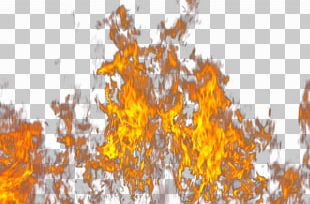 Fire Flame Light PNG