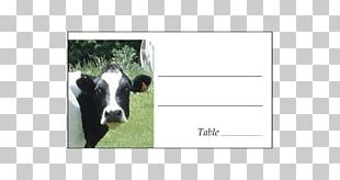Dairy Cattle Calf Dog PNG