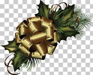 Christmas Tree Santa Claus PNG