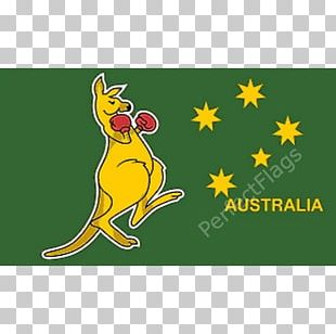 Boxing Kangaroo Flag Of Australia PNG