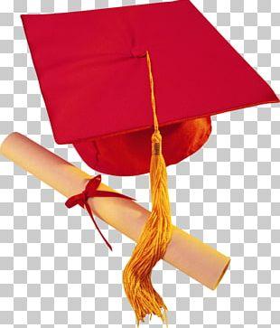 Graduation Ceremony Diploma Cap School PNG