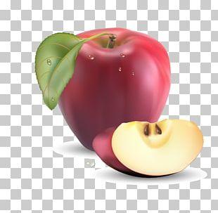Fruit Realism Apple PNG