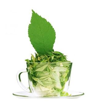 Green Tea Assam Tea Matcha White Tea PNG