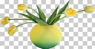 Vase Flower Bouquet Cut Flowers PNG