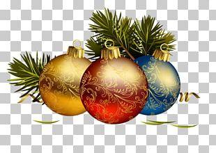 Christmas Graphics Christmas Day Portable Network Graphics Christmas Ornament PNG