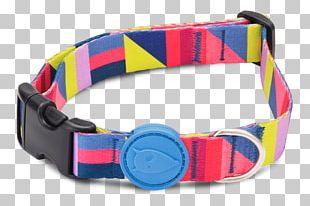 Dog Collar Dog Collar Clothing Accessories Fashion PNG