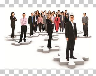 Human Resource Management Human Resource Consulting Business PNG