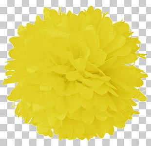 Tissue Paper Pom-pom Turquoise Color PNG