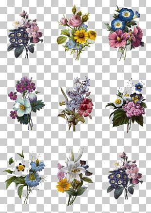 Floral Design Flower Bouquet Nosegay PNG