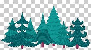 Christmas Tree Christmas Ornament Fir Christmas Card PNG